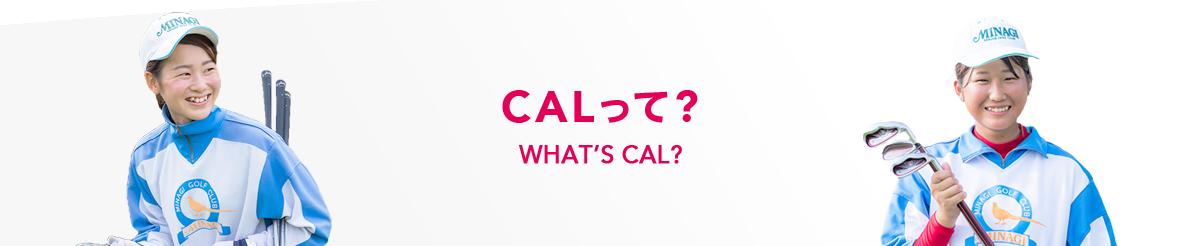 CALって?